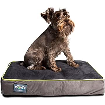 top selling Better World Pets