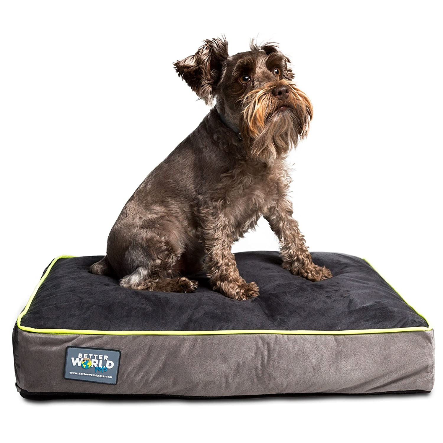 amazoncom  better world pets inch thick waterproof orthopedic  - amazoncom  better world pets inch thick waterproof orthopedic memoryfoam dog bed with  gsm removable washable cover small ( x  x ) ( dogs