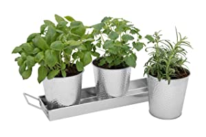 Windowsill Herb Pots - Set of 3 Galvanized Indoor Planters and Tray