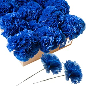 Royal Imports Artificial Carnations, Silk Faux Flowers, for Funeral Arrangements, Wedding Bouquets, Cemetery Wreaths, DIY Crafts - 100 Single 5