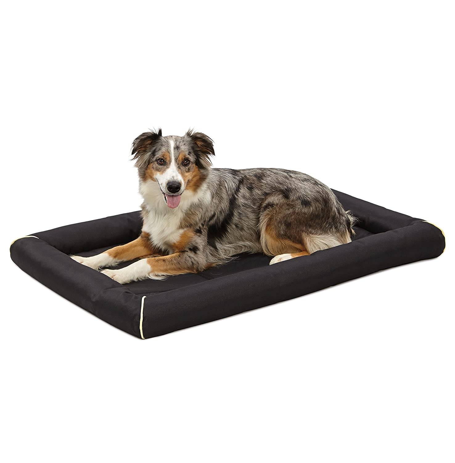 company dog ass chew for with innovative news topper an bed collection introduces xl big proof