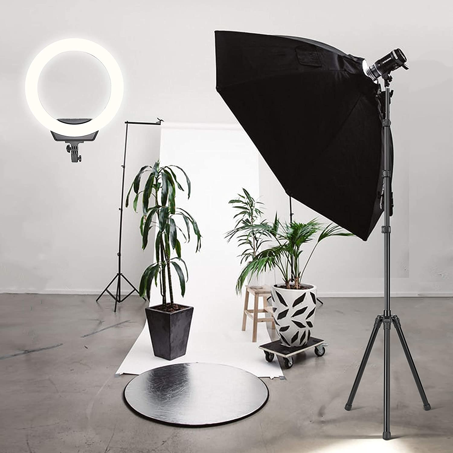 with Tripod and Phone Holder Carrying Bag for Camera,Smartphone,YouTube,Self-Portrait Shooting( Protect Eyes) ZOMEi Ring Light 16 //40.5cm Outer 3200-5600K Dimmable LED Ring Light