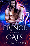 Prince of Cats: Autumn Court #1 (Rosethorn Valley Fae Romance)