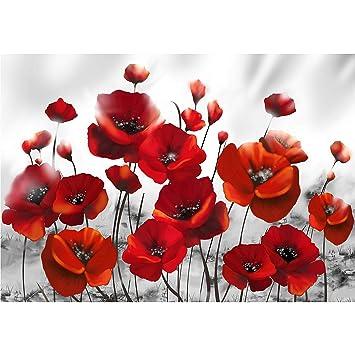 decomonkey Fototapete Mohnblumen 400x280 cm XL Tapete Fototapeten Vlies  Tapeten Vliestapete Wandtapete moderne Wandbild Wand Schlafzimmer  Wohnzimmer ...