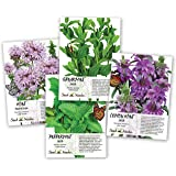 Mint Seed Collection / Seed Collection (Peppermint, Spearmint, Pennyroyal Mint & Lemon Mint) Non-GMO Seeds by Seed Needs