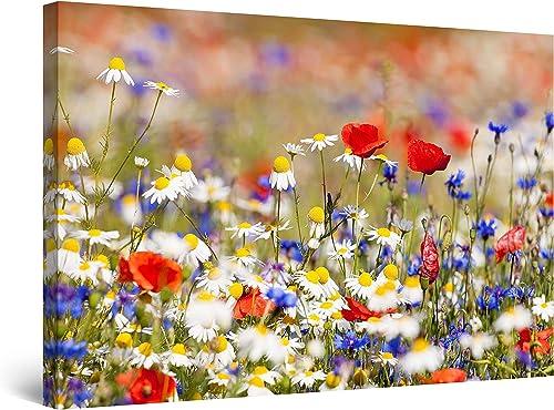 Startonight Canvas Wall Art Landscape Photo Flowers Field Colored