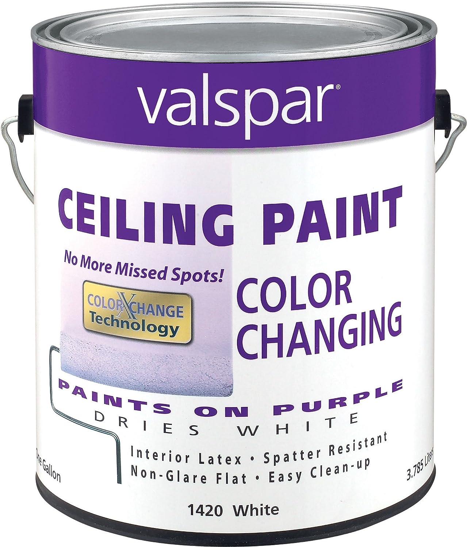 white ceiling paintAmazoncom Valspar 1420 Color Changing Latex Ceiling Paint 1