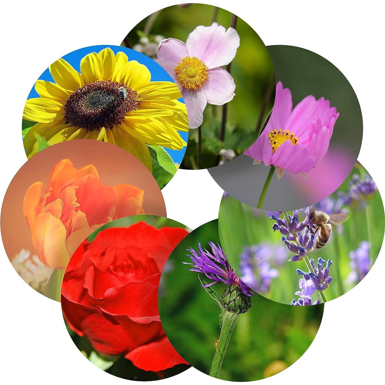 Children 6 Stickers @ 9.5cm Teachers Graphic Flavour Flowers Reward Sticker Labels Parents