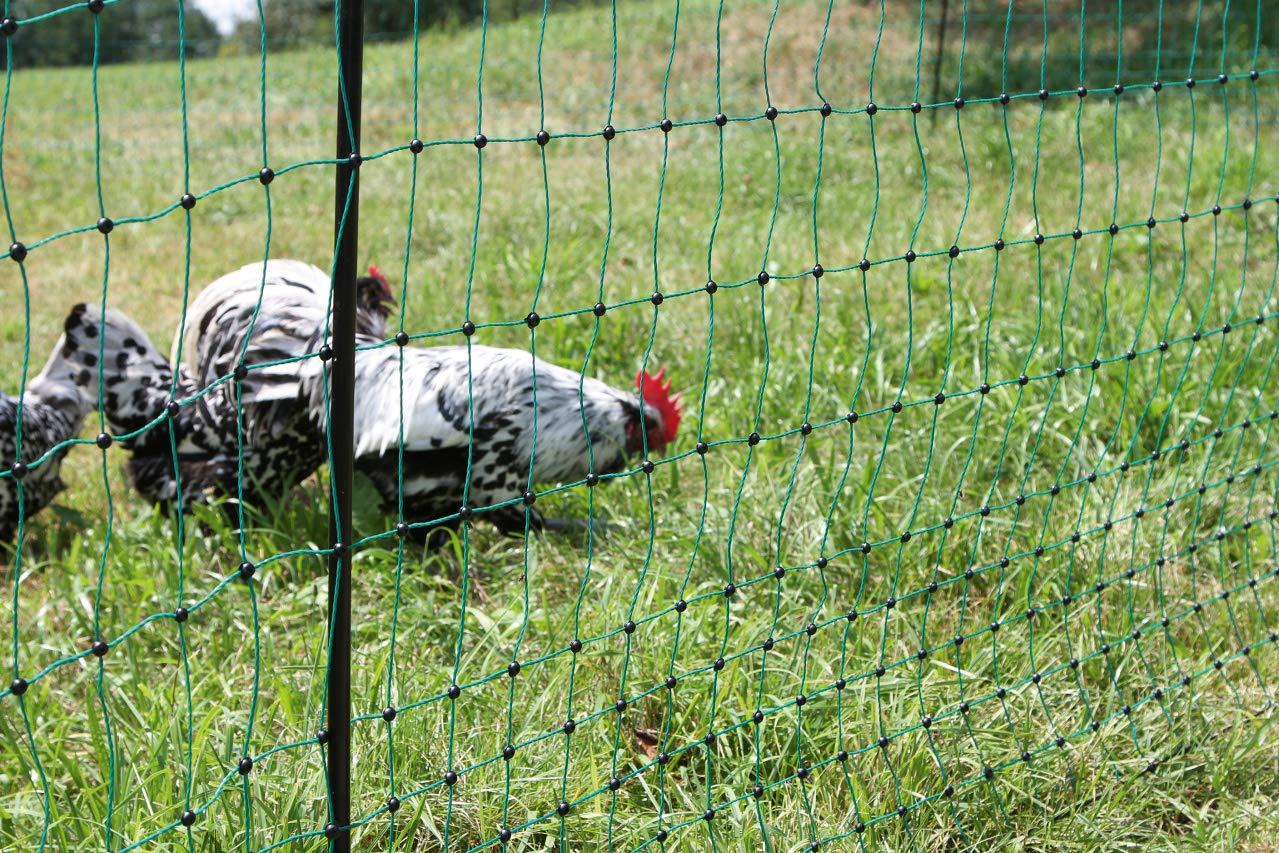 106 cm Kerbl 292271 Poultry Net 50 m 106 cm Double Pointed orange