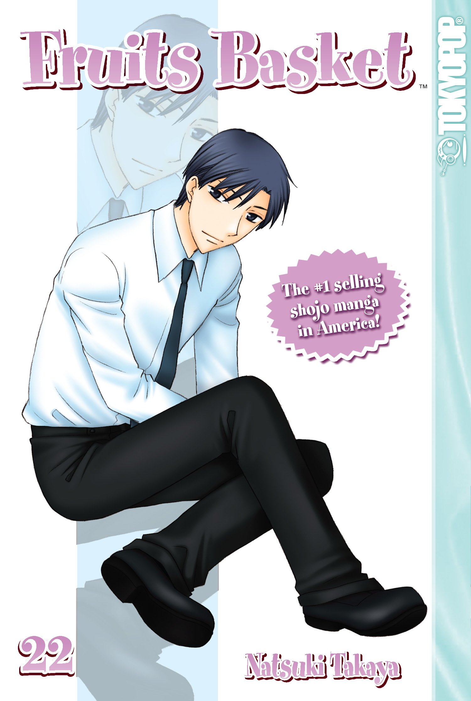 Download Fruits Basket, Vol. 22 pdf epub