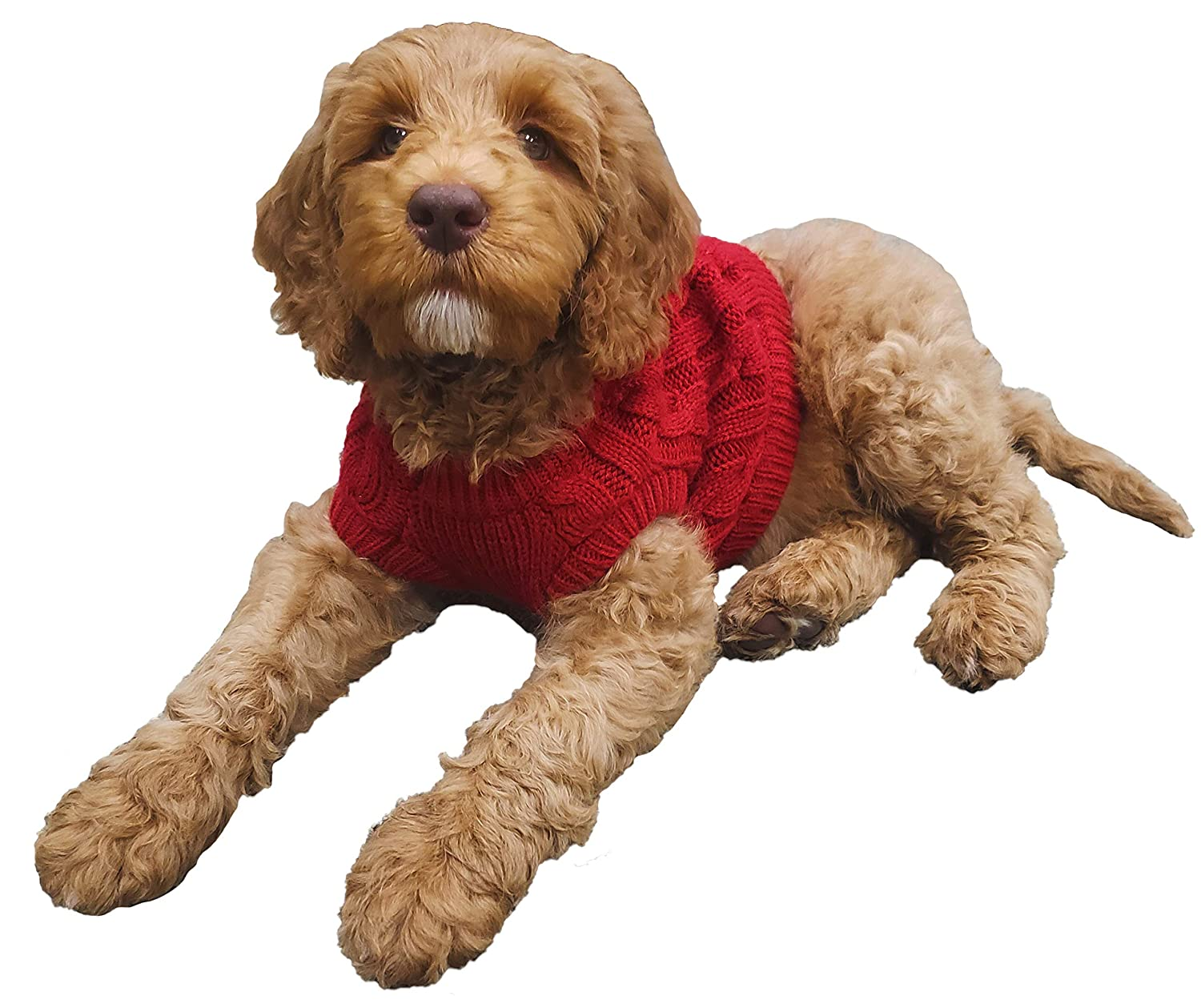 ced0e25fd Amazon.com   Funky Junque DOG-100-42-M C.C Pet Sweater - Red (M)   Pet  Supplies