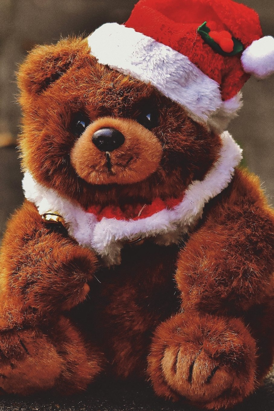 Read Online Christmas Teddy Bear Journal: 150 page lined notebook/diary ebook