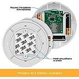 TOPGREENER TGCSL360-4PCS LED Motion Sensor