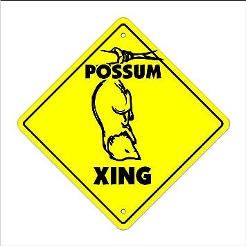 """18/"""" Wide Indoor//Outdoor SQUIRREL Street Sign xing crossing nuts roadkill hunt"""