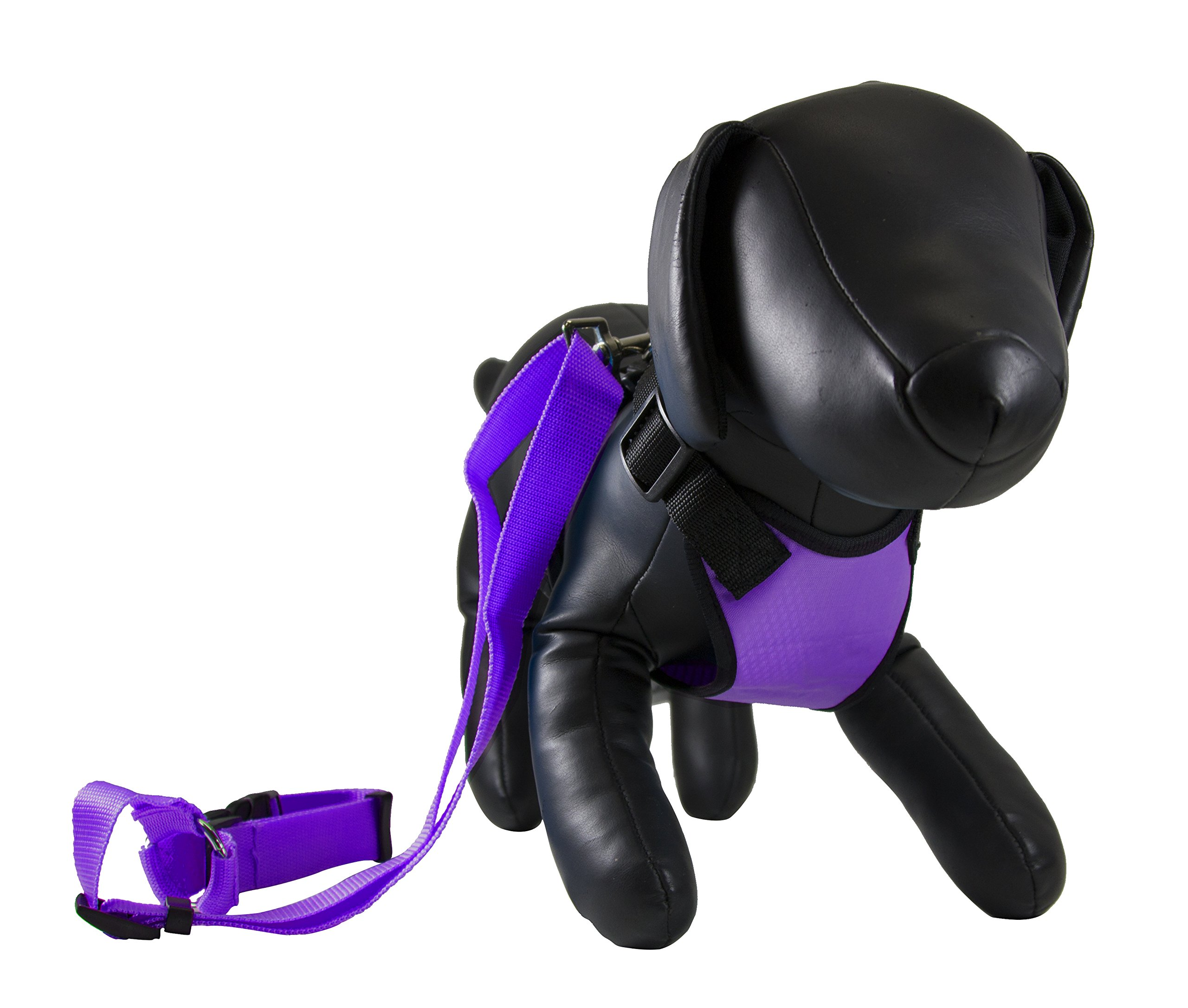 Petcessory Travel Harness with Leash Purple 14'' - 15'' by Petcessory