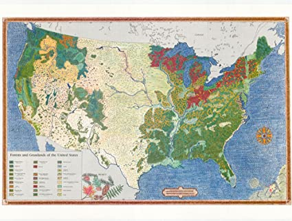 Amazoncom Us Forests Grasslands Map Office Products - Map-of-us-forests