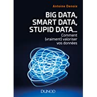 Big Data, Smart Data, Stupid Data... : Comment (vraiment) valoriser vos données
