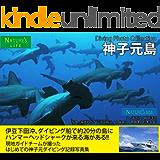 神子元島 ダイビング写真集 ~ハンマーヘッドシャークが来る海 記録写真集~ 電子ブック水中写真集