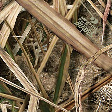 5b057215abd6b Amazon.com: Mossy Oak Graphics 14011-SGB Shadow Grass Blades Auto Interior  Skin: Automotive