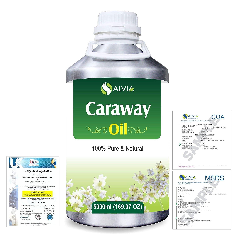 Caraway (Carum carvi) 100% Natural Pure Essential Oil 5000ml/169fl.oz. B07R3ZLLGX