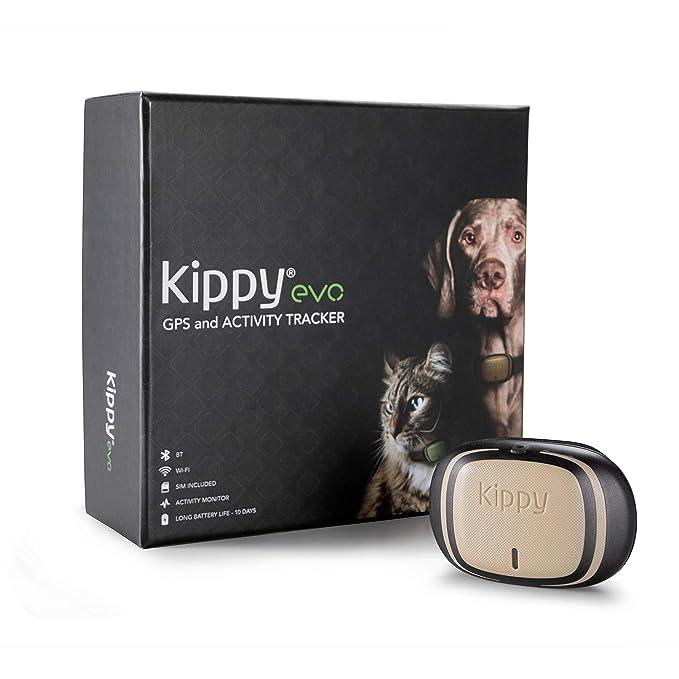 53 opinioni per Kippy EVO, Il nuovo GPS and Activity Monitor per cani e gatti, 38 gr,