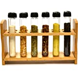 """Hand Made Test Tube Spice Rack, Wooden Rack with 12 Borosilicate Glass Test Tubes (6"""" Long, 1"""" Dia.) with Caps and…"""
