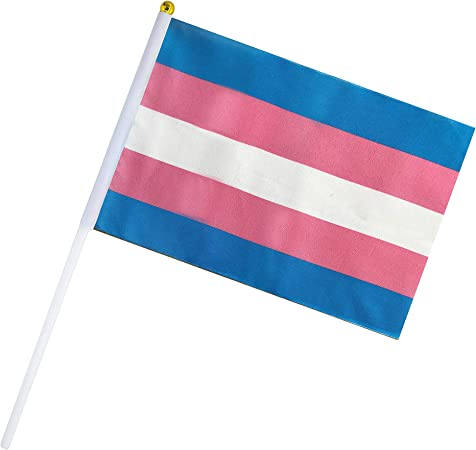 Amazon Com 50 Pack Transgender Flag Rainbow Pride Stick Flag Small Mini Hand Held Flags On Sticks Decorations Supplies For Mardi Gras Transgender Pride Rainbow Party Transgender Festival