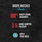 ORIJEN Freeze-Dried Dog