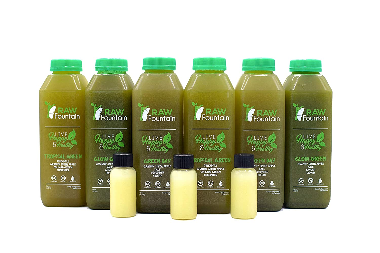 RAW Fountain 3 Day Green Juice Cleanse, 100 Raw Natural Vegan Detox, Cold Pressed Juices, 18 Bottles 16oz 3 Ginger Shots