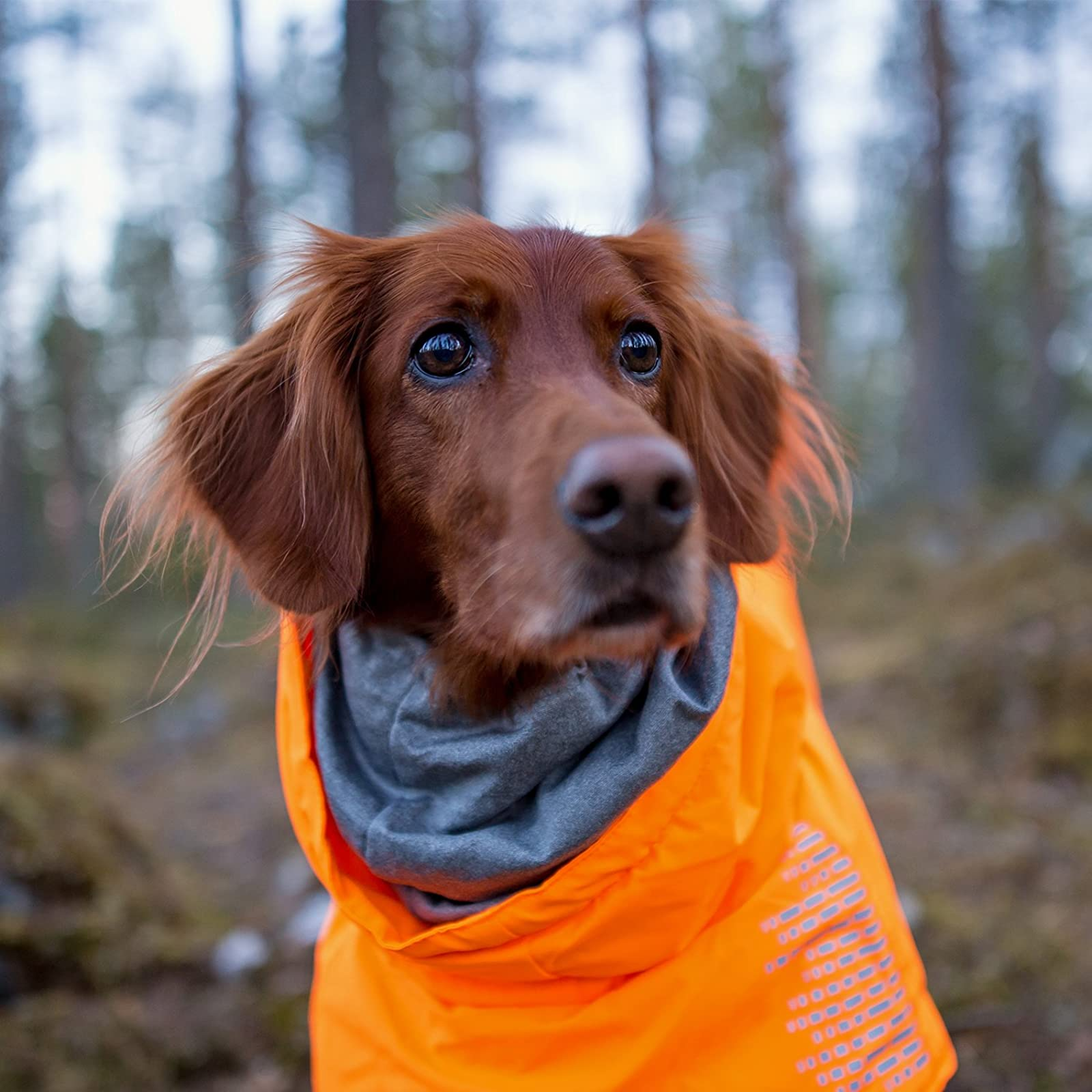Hurtta Extreme Warmer Dog Winter Jacket Orange HU933014 - 3