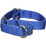 PetSafe Martingale Dog Collar, Alternative to Choke Collar