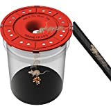 RinneTraps- Hole in One Mouse Trap – Humane – Reusable – Multi Catch – No See Kill – Indoor/Outdoor