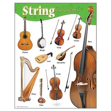 Amazon Trend Enterprises Inc String Instruments Learning