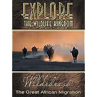 Explore The Wildlife Kingdom: Wildebeest - The Great African Migration