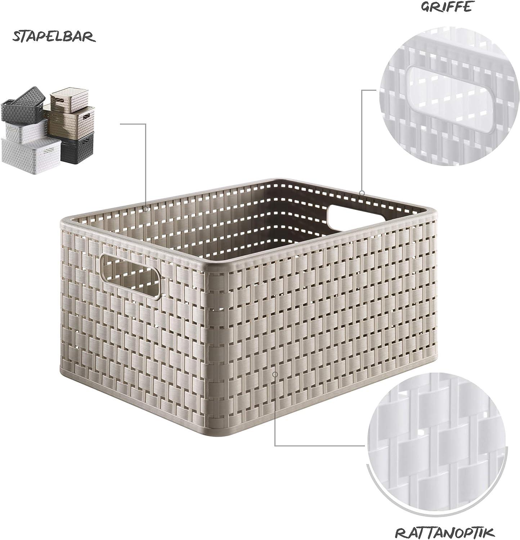 Rotho Country, Caja de almacenamiento de 18 litros en aspecto de ratán, Plástico PP sin BPA, capuchino, A4, 18l 36.8 x 27.8 x 19.1 cm: Amazon.es: Hogar