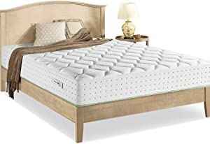 Zinus Italian Made 12 Inch Olive Oil Pocket Spring Hybrid Mattress/Made in Italy/Oeko-TEX Certified/Pocket Innersprings for Motion Isolation/Olive Oil Infused Memory Foam/Bed-in-a-Box, Queen