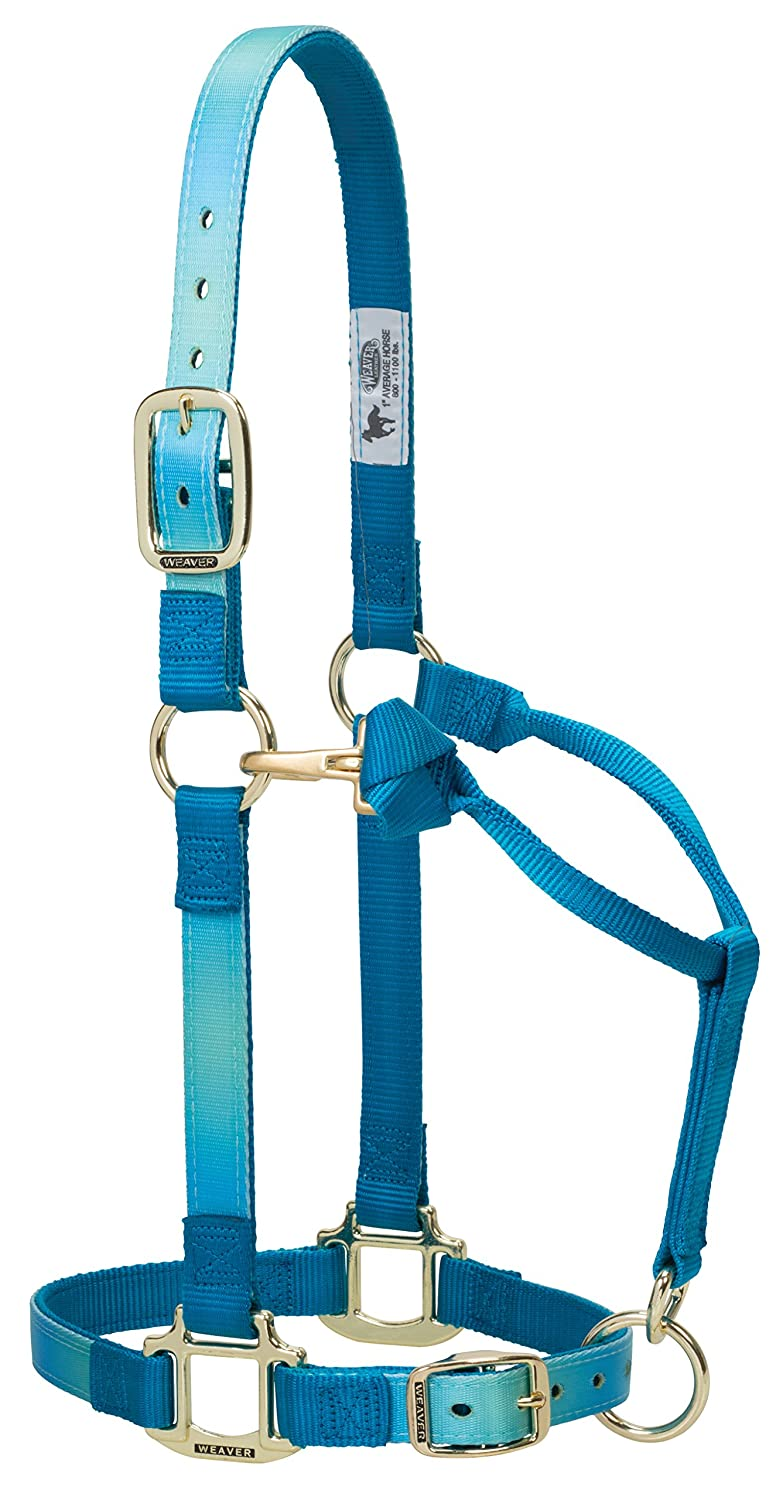 Hurricane bluee Ombre Large Horse Hurricane bluee Ombre Large Horse Weaver Leather Adjustable Patterned Nylon Horse Halter