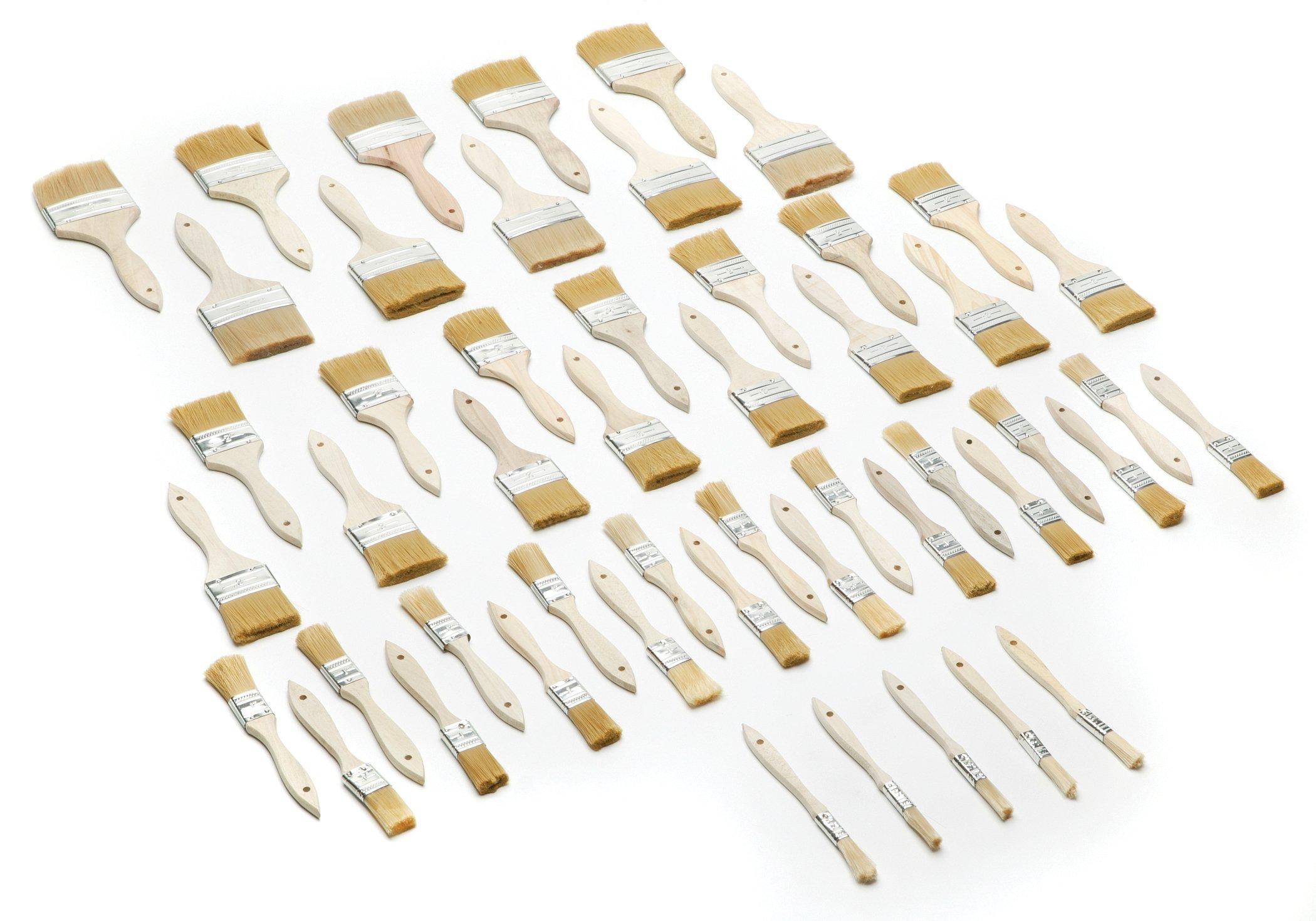 Woodstock D2025 Synthetic Bristle Brush Set, 50-Piece