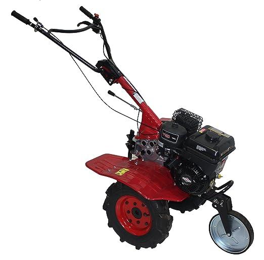 Motoaza de transmisión por correas, motor a gasolina Briggs ...