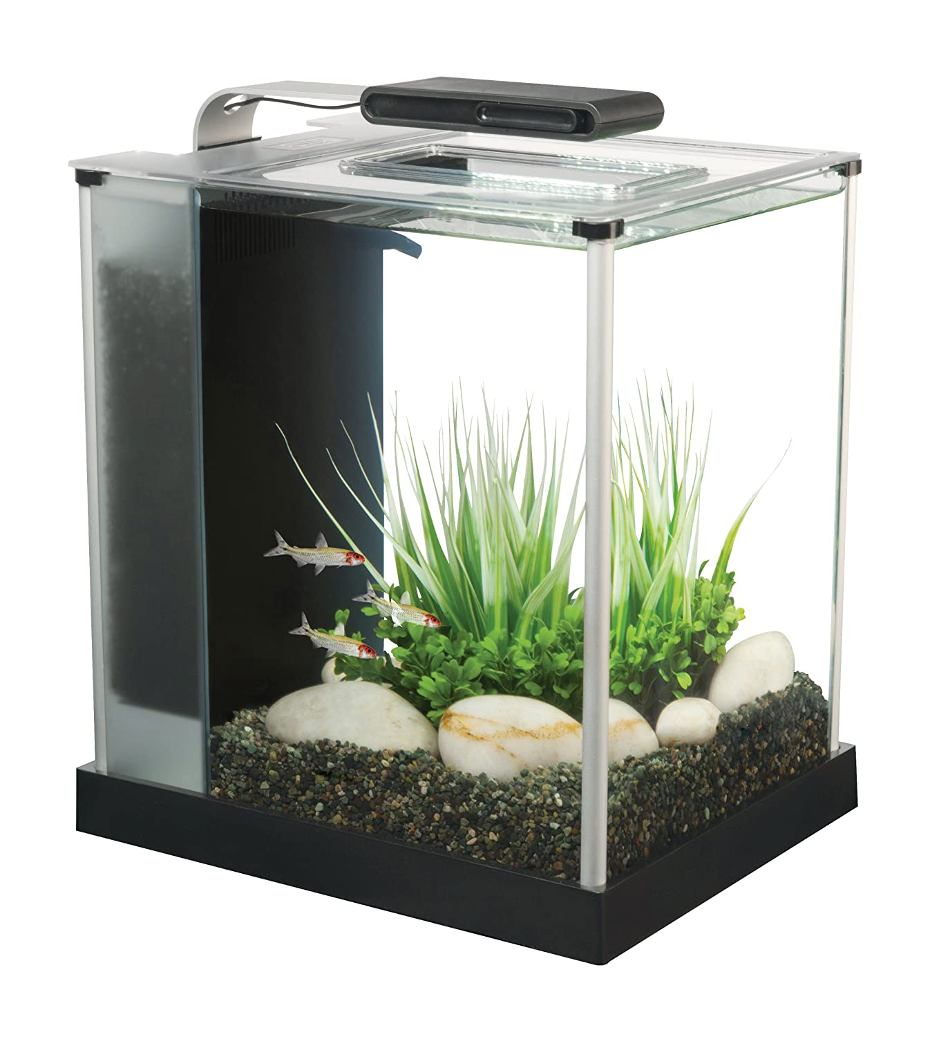 Small nano aquarium fish tank tropical - Fluval Spec Iii Aquarium Kit 2 6 Gallon Black