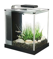 2.6 gallon fish tank for Betta