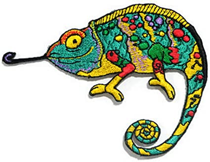 Gecko Lizard Patch Embroidered Iron on Sewing Kids Salamander Iguana Chameleon