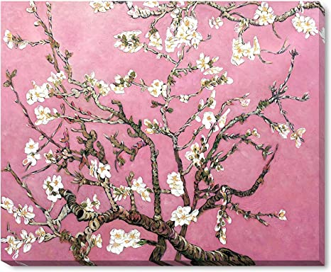 Amazon Com La Pastiche Vg3037 Galwrp18x22 Framed Oil Painting Branches Of An Almond Tree In Blossom Pearl Pink Hand Painted Original By With Gallery Wrap Paintings