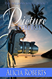 Picture Perfect (The Wilsons Book 2)