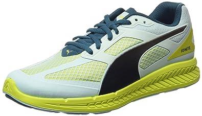 359bae93495 Puma Women s Ignite Mesh Wn s Mesh Running Shoes  Amazon.in  Shoes ...