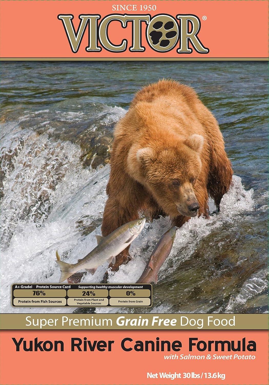 Victor Dog Food Grain-Free Yukon River Canine Salmon and Sweet Potato