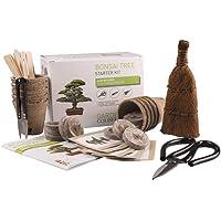 kit bonsaï, Kit de plantation bonsaï à faire pousser - Ensemble cadeau jardinage - Contient 5 sachets de graines, 3 outils- qualité supérieure, kit de germination des graines, idée cadeau unique,