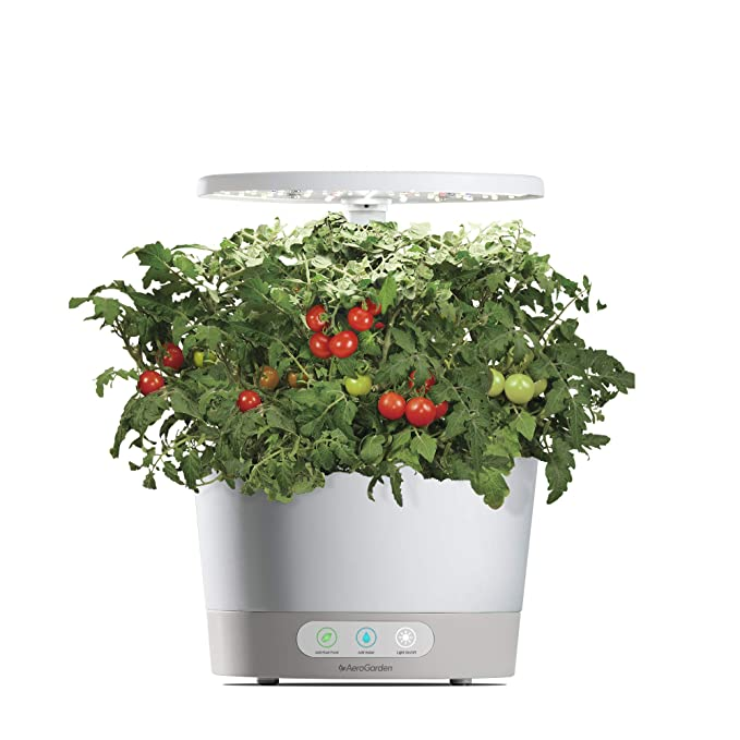 DEAL OF THE DAY! GROW YOUR OWN HERBS INDOORS WITH AEROGARDEN HARVEST 360!
