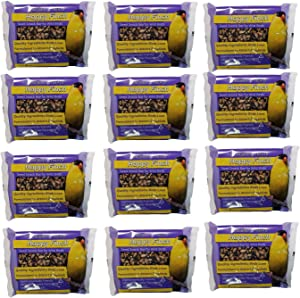Songbird Treats Seed Bars | 12 Pack of 8 oz Bird Seed Cakes for Wild Birds (Happy Finch)