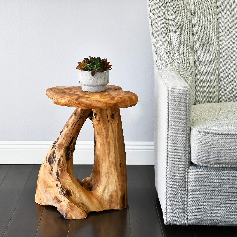 - Amazon.com: WELLAND Tree Stump Side Table, Live Edge Stool